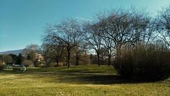 Brescia - Parco Gallo (lorbon88) Tags: brescia parcogallo