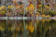 colorful reflection (mariola aga) Tags: spencerpark belvidere autumn trees lake water reflection landscape nature naturethroughthelens coth coth5