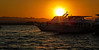 Back from a scuba diving day trip (werner boehm *) Tags: wernerboehm sunset boats redsea sun mountains libyendesert