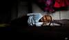son coeur lui  n'a pas de ride ! (poupette1957) Tags: art atmosphère canon city curious colors costumes detail humanisme imagesingulières interior life laos old photographie people portrait rue street town travel urban ville voyage grandangle lightroom