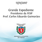 Grande Expediente - Participação do Presidente da Fundação de Estudos Sociais do Paraná - FESP - Prof. Carlos Eduardo Guimarães