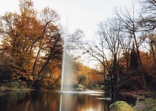 Teich im Dortmunder Zoo