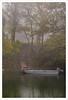 Barca sull'Oglio (Outlaw Pete 65) Tags: paesaggi landscapes alberi trees nebbia fog barca boat fiume river acqua water colori colours nikond600 sigma105mm monticellidoglio lombardia italia