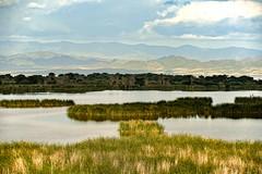 Marshlands, Lake Chamu (Rod Waddington) Tags: africa african afrique afrika äthiopien ethiopia ethiopian ethnic etiopia ethnicity ethiopie etiopian omo omovalley outdoor lake chamu south arbaminch grass mountains water marsh marshland landscape outdoors