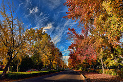 "TheEsplanade (DonBantumPhotography.com) Tags: nature chicocalifornia autumn fallcolors leaves ""donbantumphotographycom"" ""donbantumcom"" ""nikon d800"" afs nikkor 20mm f18g ed n"""
