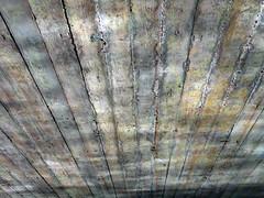 Water Reflections on the Ceiling (Ed Sax) Tags: alster edsax hamburg brücke architektur grau muster schattenspiel shades nsg naturschutzgebiet alstertal ring3 beton stahlbeton altern rusty crusty