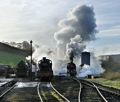 4277 lifts a goods train into Cheddleton station. (johncheckley) Tags: d90 uksteam locos steam
