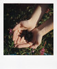 instant film (La fille renne) Tags: film analog lafillerenne instantfilm instant polaroid polaroidsx70alpha impossibleproject impossiblesx70color pau brittany blueberry hand bokeh