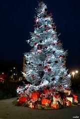 Illumination de Noël à Istres (Missfujii) Tags: