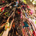 Bracelet Tree thumbnail