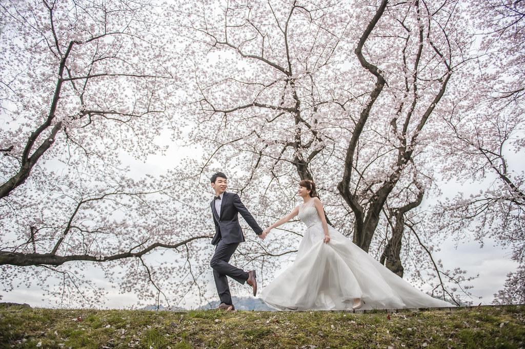 京都婚紗 割背提櫻花婚紗拍攝