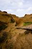 "Crater at Rano Raraku (Kristin ""Shoe"" Shoemaker) Tags: chile easterisland rapanui rano raraku quarry caldera"
