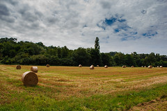 Fields in France (T is for traveler) Tags: travel traveler traveling tisfortraveler exploration explore digitalnomad backpacker field sky earth landscape france trees europe canon 700d 1855mm photography