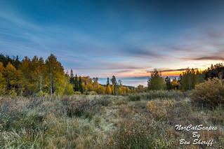 Lake Tahoe, Aspens and Sunset
