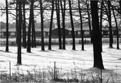 P2604A-winter-vintage-housing-013