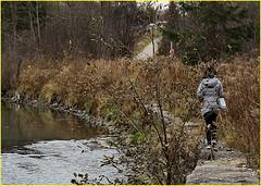 171125 East Don Parklands (49) (Aben on the Move) Tags: toronto ontario canada park nature eastdonparklands