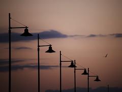 Lampioni, che passione ! (nicolamarongiu) Tags: lampioni minimal lessinmore emotive cagliari sardegna sunset sardinia color tramonto flickr