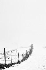 Premières neiges (RémyBochu) Tags: bw france franchecomté nb rémyb terre blackwhite blackandwhite brouillard canon doubs eos eos5d exterieur fog froid hautdoubs hiver landscape mist monochrome montvouillot montagne morning morteau mrmyz nature neige noirblanc noiretblanc outdoor payshorloger paysage region solitude solo valdemorteau