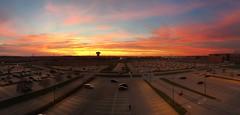BloNo Sunset