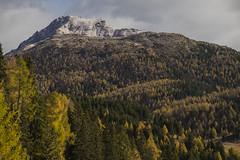 val di non (ELIA MORA) Tags: verde valdinon lagoditovel trentino romedio santuario sanromedio reflections mountains adamello brenta dolomiti dolomites alpi alps