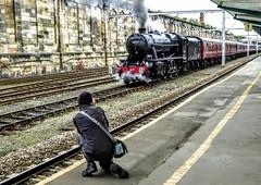CARLISLE STATION (pajacksonartist) Tags: carlise station steam train phographer rail railway railways