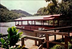 Waialeale Boat Tours (late 80's) (jcc55883) Tags: kauai wailiuariver waialealeboattours boattour wailuariver wailuarivertour makanaroad hawaii film oldfilm 35mmfilm filmphotography canon canon35mm wailuariverstatepark