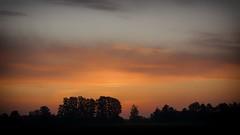 *** (pszcz9) Tags: polska poland przyroda nature natura dolinabaryczy baryczvalley wschódsłońca sunrise świt dawn pejzaż landscape jesień autumn beautifulearth sony a77 drzewo tree