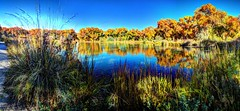 Pond in the Bosque (JoelDeluxe) Tags: tingley beach abq bosque albuquerque dukecity nm newmexico biopark ponds fall colors red orange yellow green blue ducks wildlife fishing recreation landscape panorama hdr joeldeluxe