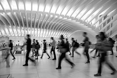 Rush (John St John Photography) Tags: worldtradecenter streetphotography candidphotography churchst occulus commuters commuting rush hour slowshutterspeed blur pathterminal newyorkcity newyork bw blackandwhite blackwhite blackwhitephotos