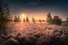 Sunrise with fog and frost ... dunes of Wissel (nigel_xf) Tags: wissel dünen binnendünen kreiskleve kalkar niederrhein germany nrw foggy nebelig sinrise sonnenaufgang nikon d300 natur nature landschaft landscape nigel nigelxf vsfototeam