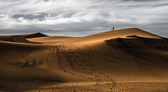 Concón (Cruz-Monsalves) Tags: viñadelmar viña mar desierto desert dunas dunes sand nature natural naturaleza earth chile concon southamerica