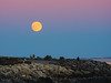 Full Moon Over North Hampton (walter_g) Tags: sonya6000 minoltamd200mmf40 rawtherapee53 gimp296 nikcolorefexpro