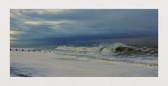 Rough Seas (hall1705) Tags: roughseas seagulls sea seascape dramatic hightide beach nikon1j5 shore crashingwaves waves water westsussex stormy nature