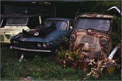 Fiat 600 M Coriasco (Multipla) Furgone (OLDLENS24) Tags: old car abandoned rusty barn find vintage school rover p6 tc citroën méhari