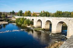 Rio Pisuerga en Cabezon (cvielba) Tags: puente valladolid cabezondepisuerga pisuerga rio romanico