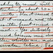 1918 November 11  Leo Baekeland in his diary