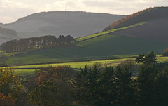 Photo of The Mount