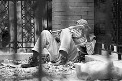Light Reading (Brian Knott Photography) Tags: newyork manhatten lowermanhatten nyc ny newyorkcity city urban street streetphotography man person bum homeless slum hood trash neighborhood queens brooklyn harlem fence wall manhattan