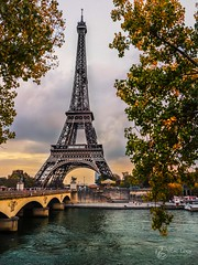 Paris novembre (Olympus Passion eric leroy) Tags: vert omd em1 mkii zuiko 714mm pro wwwolympuspassionfr paris tour eiffel towers ballade travel voyage f28 28