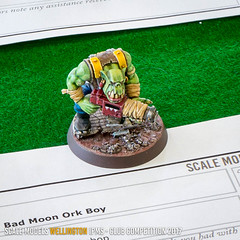 D1 - Bad Moon Ork Boy - Will Vale