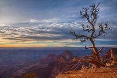 Canyon Sunrise (jbarc in BC) Tags: grandcanyon northrim rim tree clouds sky mountains sunrise arizona az dawn light sun