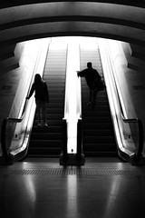 Down the light (parenthesedemparenthese@yahoo.com) Tags: bw backlighting belgique belgium calatrava escalators femme gare liège man railstation reflection silhouettes stairs woman blackandwhite byn canon600d day handrails homme summer urbancity urbanlandscape ef35mmf2