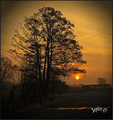 Everythings Changing. (Picture post.) Tags: landscape nature green sunrise morning trees fields hedge fence sunburst reflections water paysage arbre eau alder silhouettes vignette