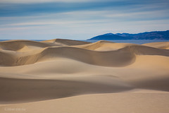 Dunes To The Sea (Mimi Ditchie) Tags: oceanodunes dunes sanddunes pointbuchon pacificocean curving curvingdunes sand shadows clouds getty gettyimages mimiditchie mimiditchiephotography
