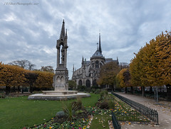 Notre-Dame, Fall Colors (elliott845) Tags: architecture notredamedeparis paris notredame europe france cathedral leaves autumn fall statue