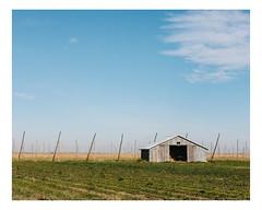 saint-édouard-de-lotbinière (Mériol Lehmann) Tags: agriculture fields rural landscape hops territoire barn topographies saintédouarddelotbinière qc canada