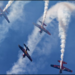 The Flying Bulls - XtremeAir XA-42 thumbnail
