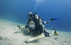Deptherapy Diving camp Oct17 14 (KnyazevDA) Tags: deptherapy disability disabled diver diving undersea padi owd underwater redsea buddy handicapped aowd amputee rescue