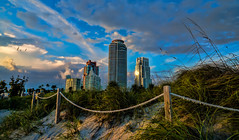 The first lights of the morning. (Happy Thanksgiving Day) (Aglez the city guy ☺) Tags: miamibeach sobe southpoint architecture miamibeacharchitecture earlyinthemorning early colors clouds dunes urbanexploration unitedstates outdoors seagull walkingaround walking beach