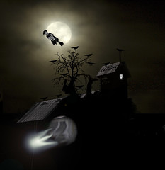 1036pm (dela7) Tags: duc1036 downunderchallenge1036 duc1032 duc760 duc620 duc210 fly witch spook hazy moon birds crows ravens skull school bell tower tree bush window door
